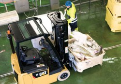 The CAT EP13PNT electric forklifts : equipped to work in the food industry!