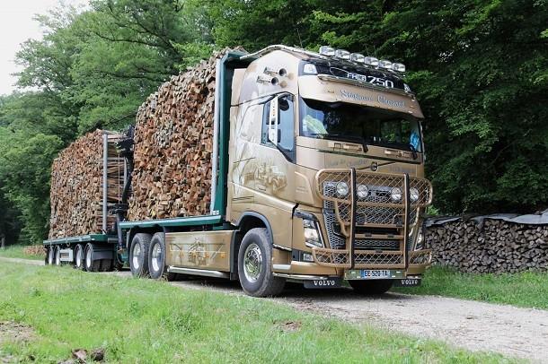 Volvo Trucks à la rencontre de la filière bois