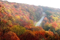 Driving in Fall: the risks to avoid